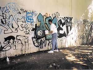 graffitti removal