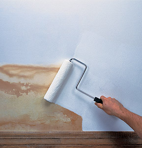 different textures for a smooth coat of paint, and possibly to help  Interior  Primers