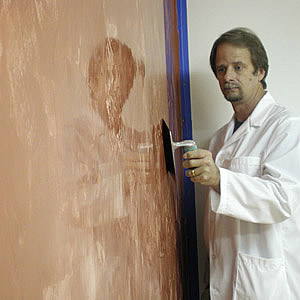 The Popularity of Venetian Plaster